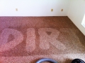 steampro-carpet-cleaning-osage-beach-mo-0001-2
